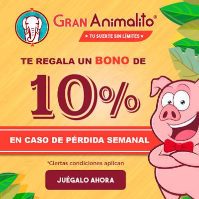 GRAN ANIMALITO BONO 10% SOBRE PERDIDA!